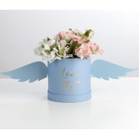 Коробка «Love can fly»